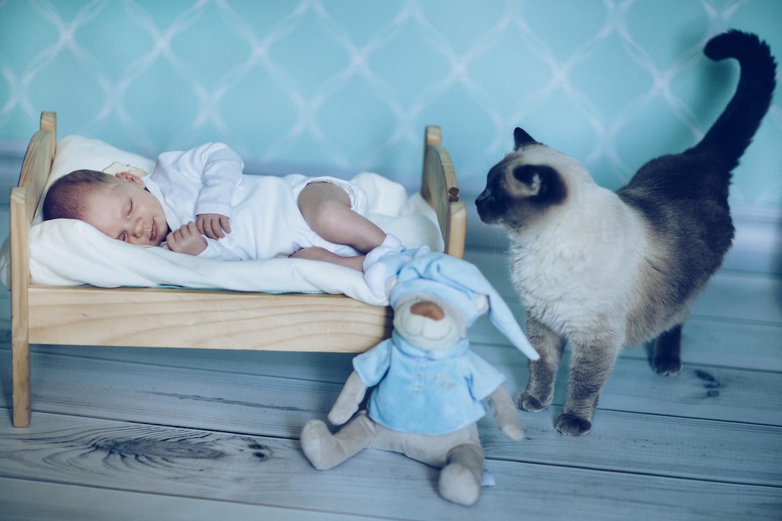 Этично ли фотографировать спящих детей? дети,семейное фото,фотография