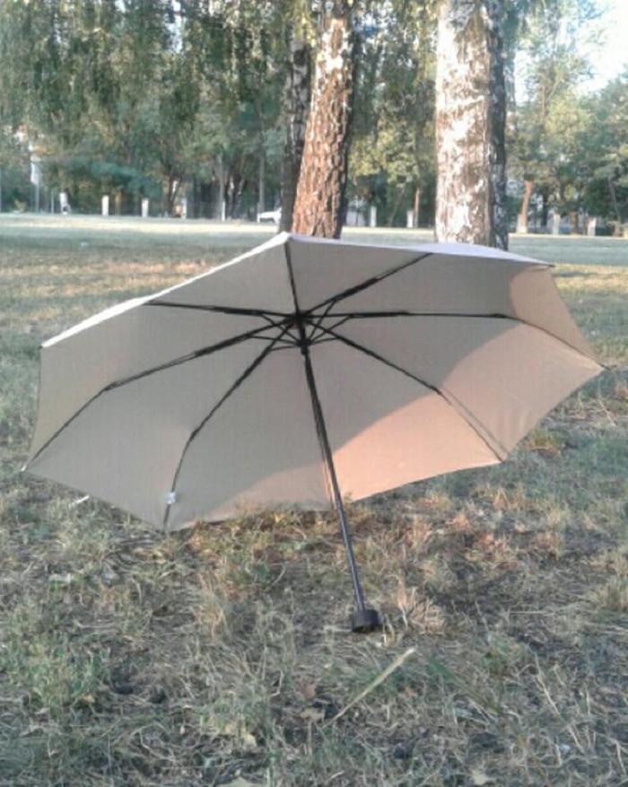 Муж научил меня выбирать такой зонт, который не ломается от ветра и не промокает: делюсь секретами