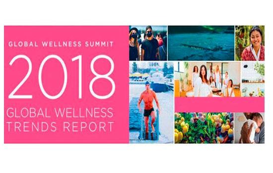 Global Wellness Summit опред…