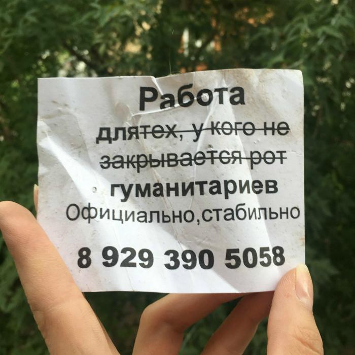 Читать между строк. | Фото: fishki.net.