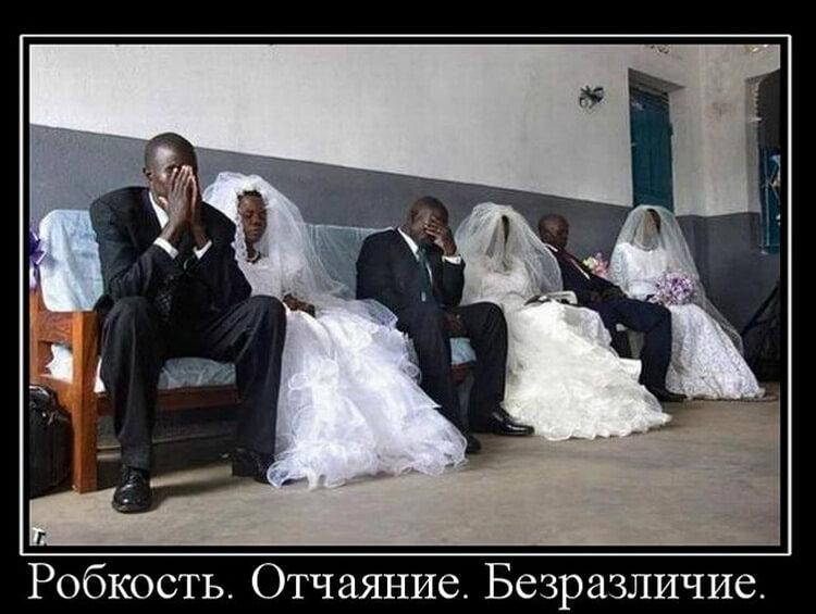 Смешные картинки женитьба, педагогу дополнительного образования