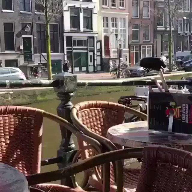 Полиция задержала 90 английских болельщиков за беспорядки в Амстердаме