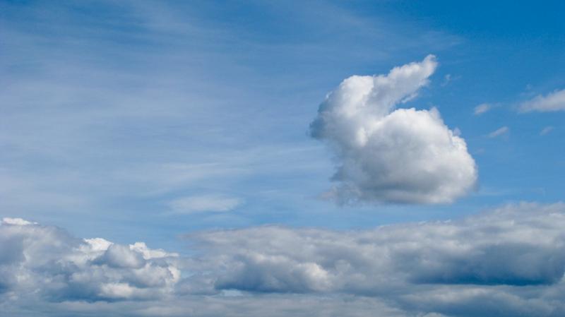Я вижу небо, облака, напоминающие зверюшек, озеро и лес вдалеке