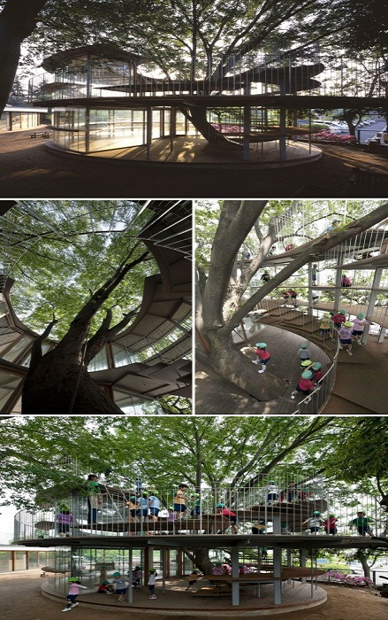 Самый большой и необычный детский сад в Токио (Япония).