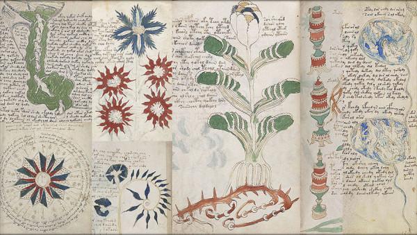 voynich-collage-pic905-895x505-95001