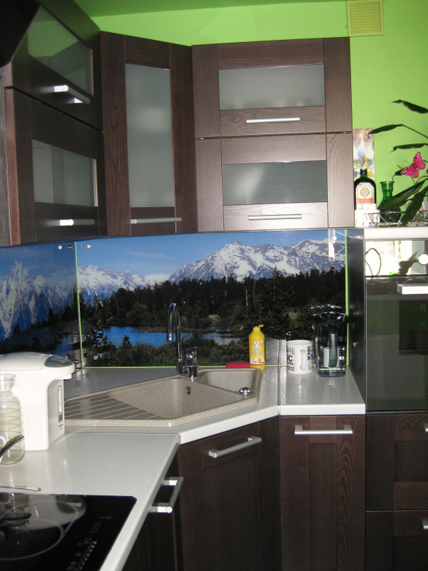 кухня совмещенная с коридором фото