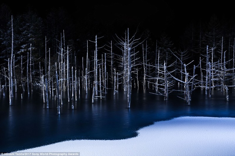 Граница света и тьмы. Фото замерзшего озера сделал японский фотограф Хироши Танита искусство, конкурс, красота, фото