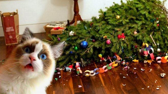 Коты и новогодние ёлки: 30 фото из серии «она сама упала!»