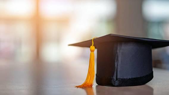 За пять лет в Великобритании закрыли 85 фальшивых веб-сайтов университетов для борьбы с мошенничеством с дипломами