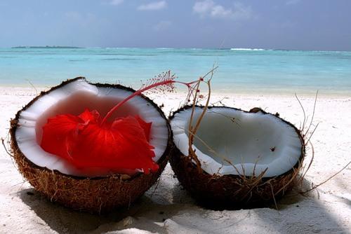 Кокосовое масло применение внутрь польза и вред