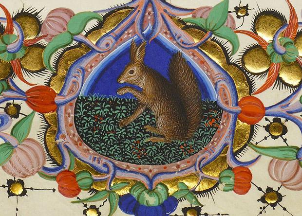 Белок обвинили в распространении проказы в средневековой Англии