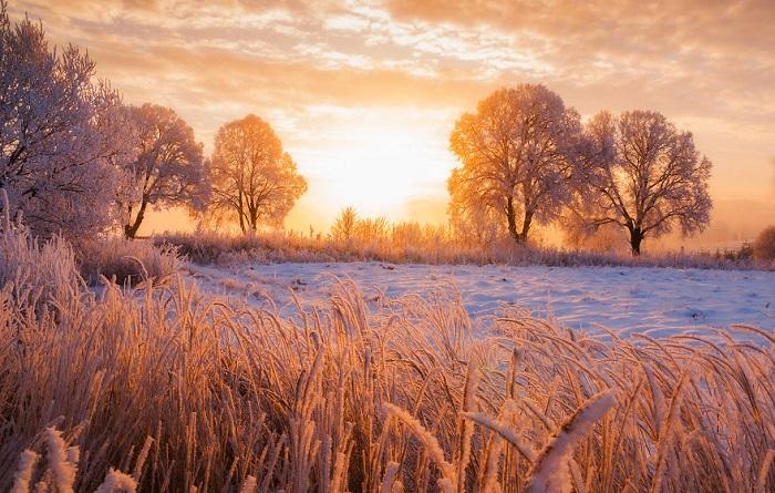Поля и травы укрыты снежным покрывалом на закате дня.