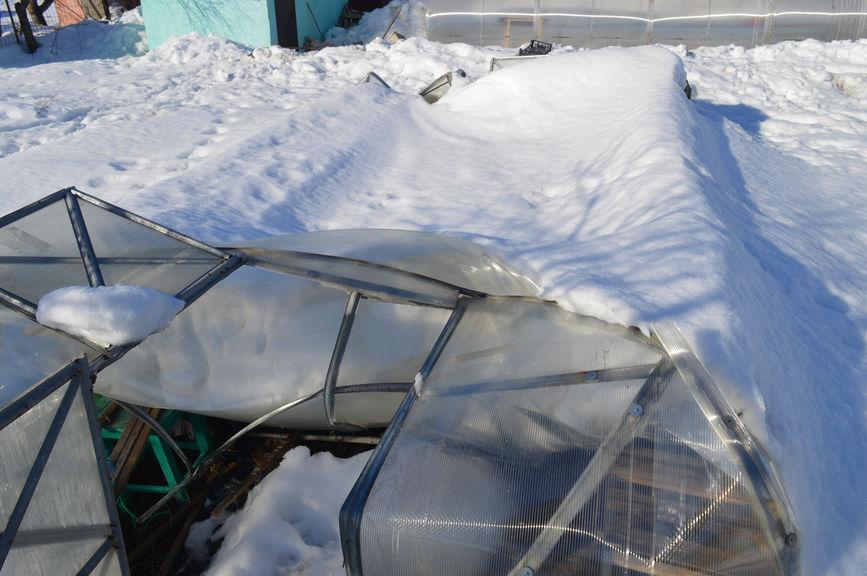 Повреждения в сломанной снегом теплицы ВОЛЯ ДАЧНАЯ 2 ДУМ