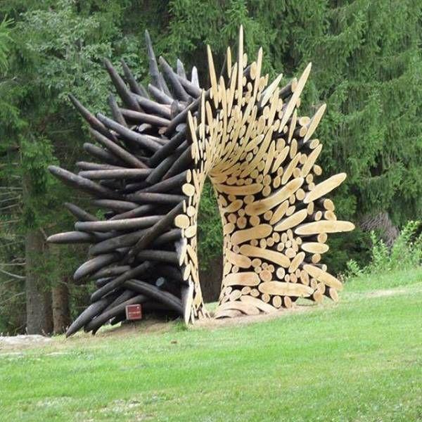 Прикольные картинки про дрова