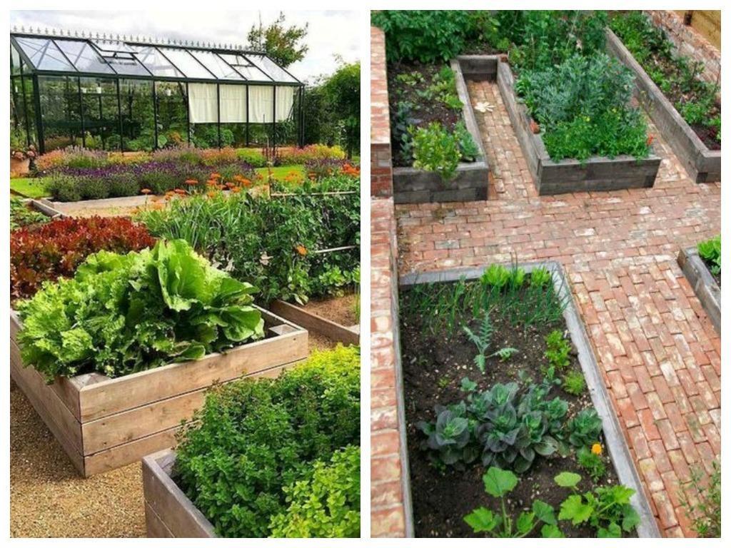 Красивые грядки, красивый огород: идеи для ценителей прекрасного дача,декоративный огород,сад и огород