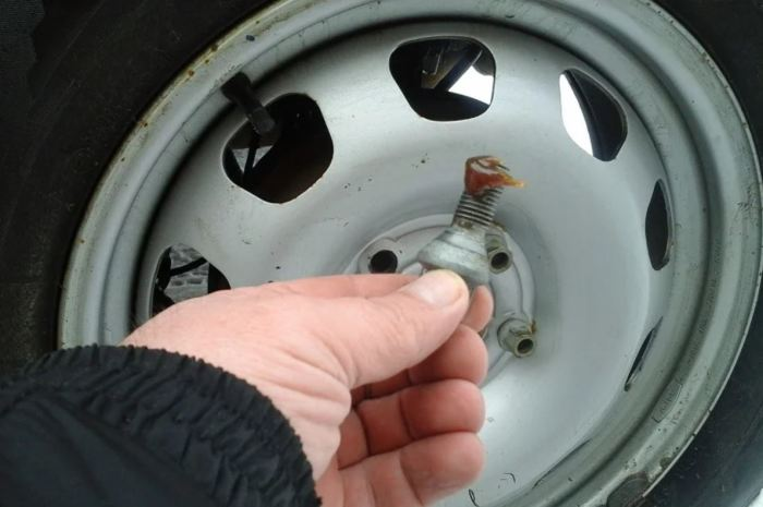 Смазывать колесные болты нельзя.  Фото: yandex.uz.