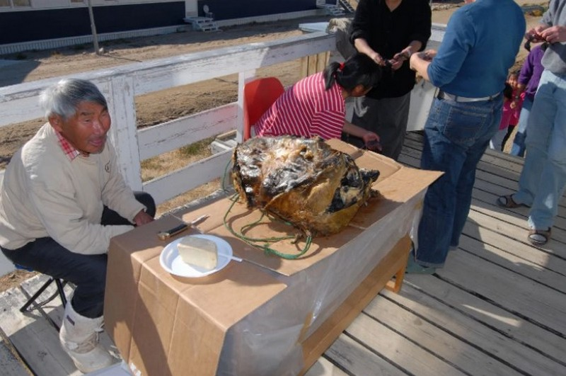 9 экзотических блюд, которые «проклянёт» русский желудок блюда,еда,экзотика