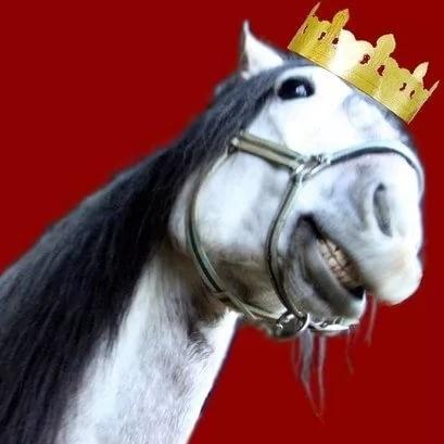 Превращение штурмана в лошадь