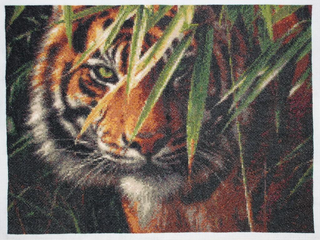 Зеленоглазый тигр