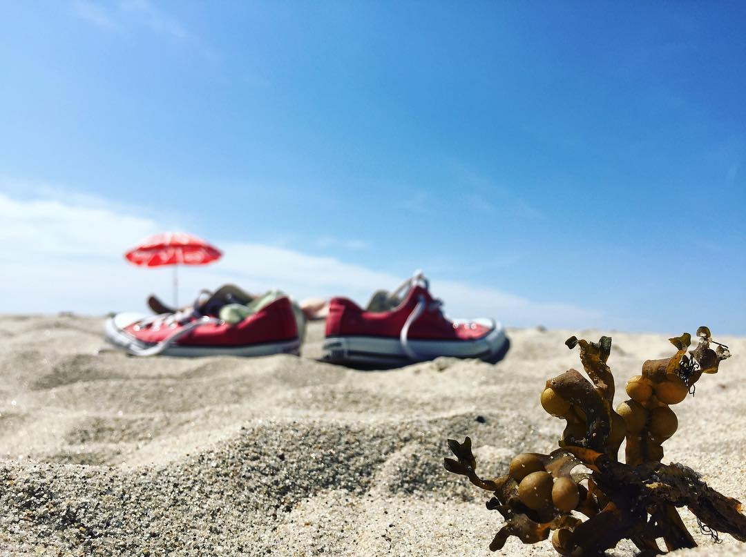 #thekaliningradroom: лучшие фото недели