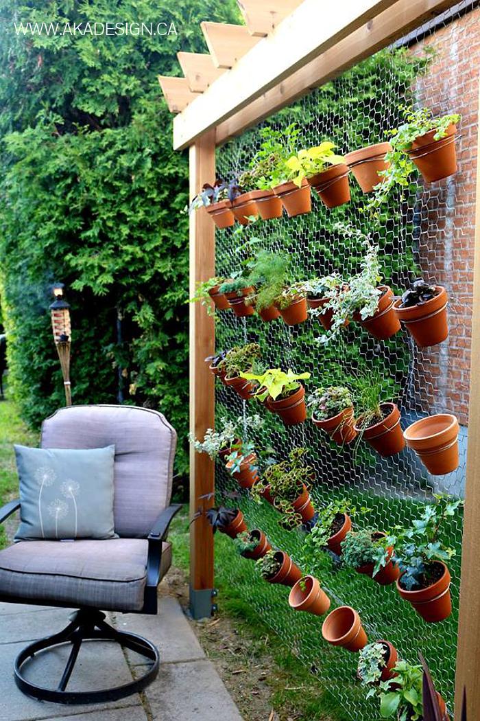 цитрусовыми, которых сад и огород своими руками фото интересные решил создать свой