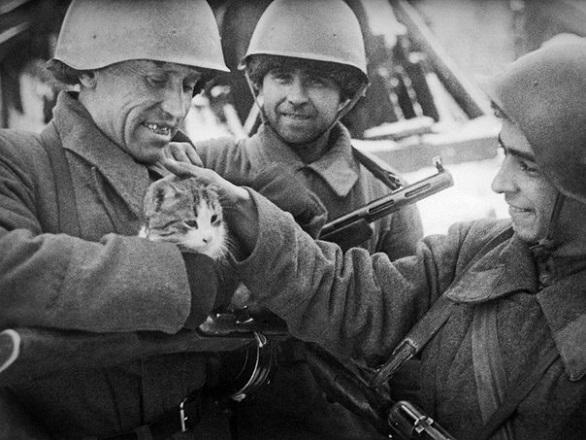Правдивая история кота Матроскина. Военная быль Великая Отечественная война,история,рассказы,СССР