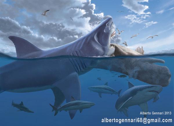 Мегалодон и большая белая акула