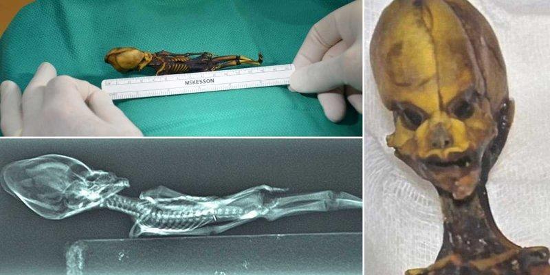 Анализ ДНК раскрыл трагическую тайну маленького «инопланетянина» из Атакамы