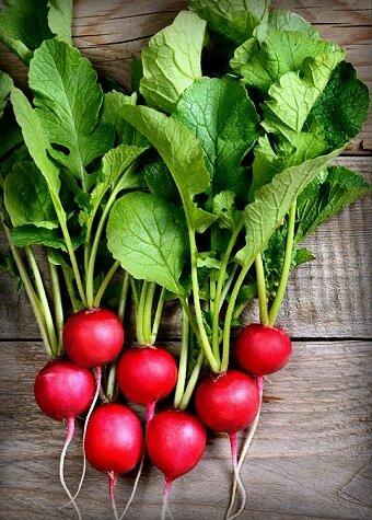 Что можно вырастить на балконе? 6 видов растений, которым нужен лишь горшок дача,огород на балконе,сад и огород