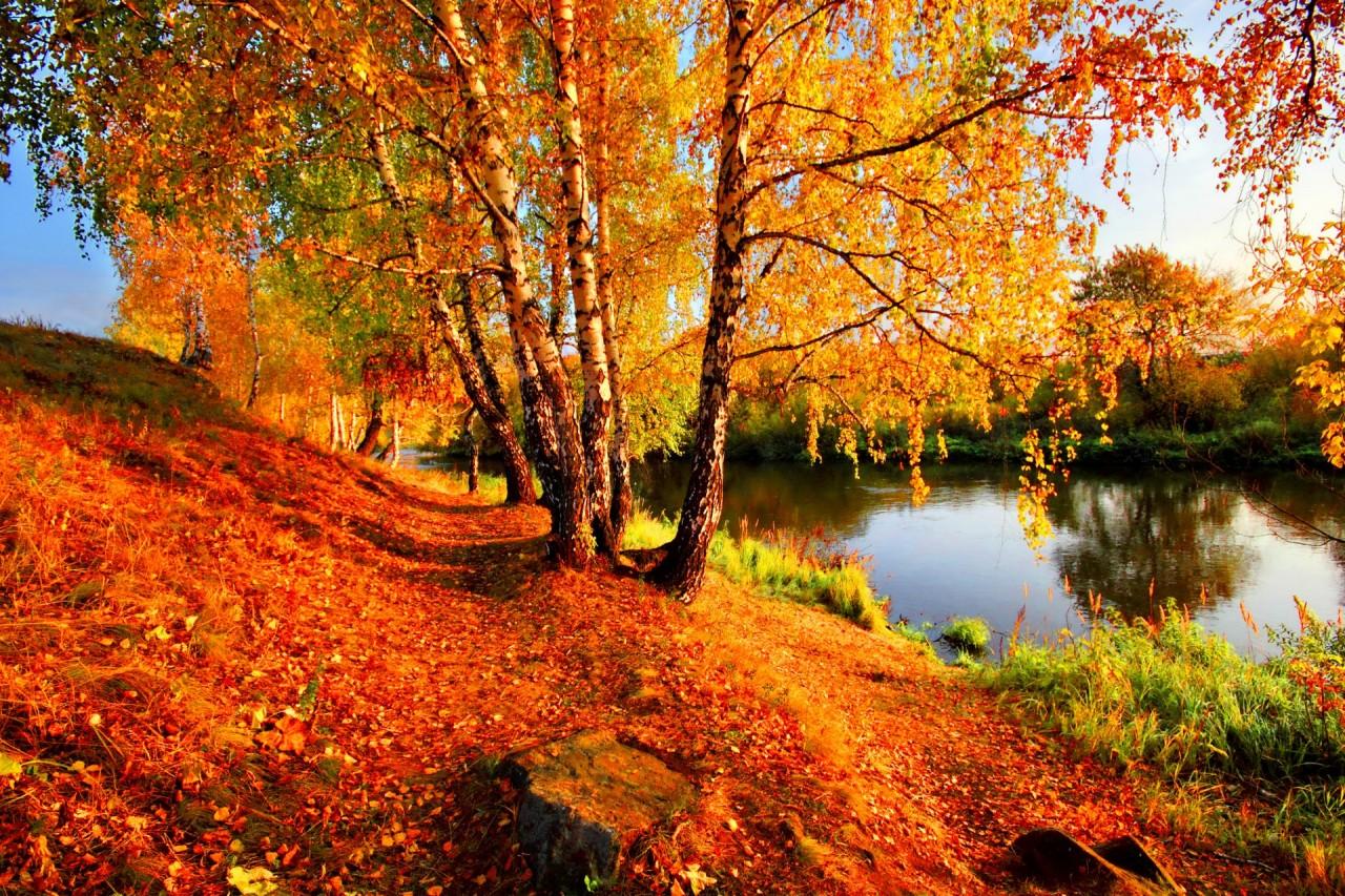 Вот почему осень — самое потрясающее время года!