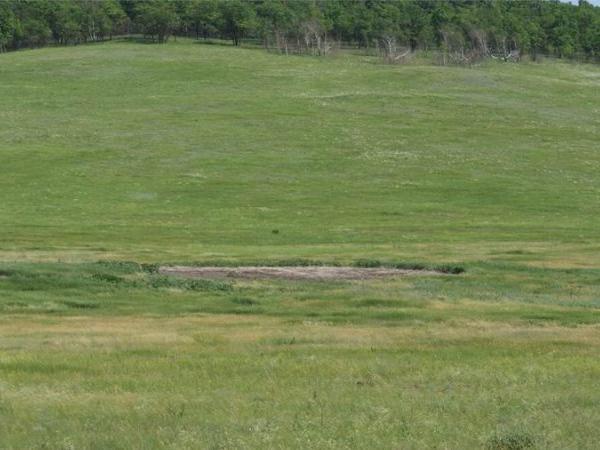 Загадочная плешь в траве на Медведицкой гряде считается местом приземления НЛО.