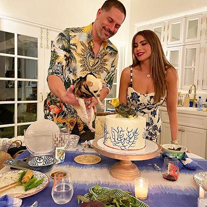 София Вергара устроила вьетнамскую вечеринку в честь 44-летия мужа Джо Манганьелло Звездные пары