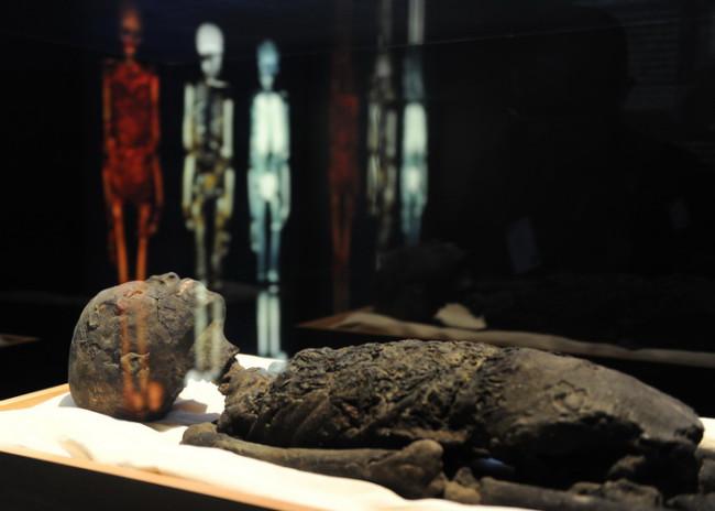 Смерть Тутанхамона — это убийство или несчастный случай?