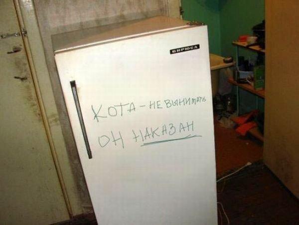 12 смешных записок на холодильниках весёлые