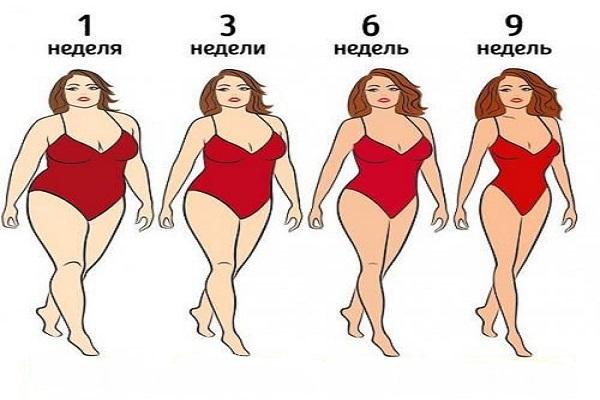 План безуглеводной диеты. Прогнозируемая потеря веса — 15 кг через 9 недель