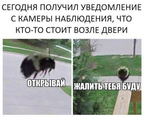 Анекдотов пост