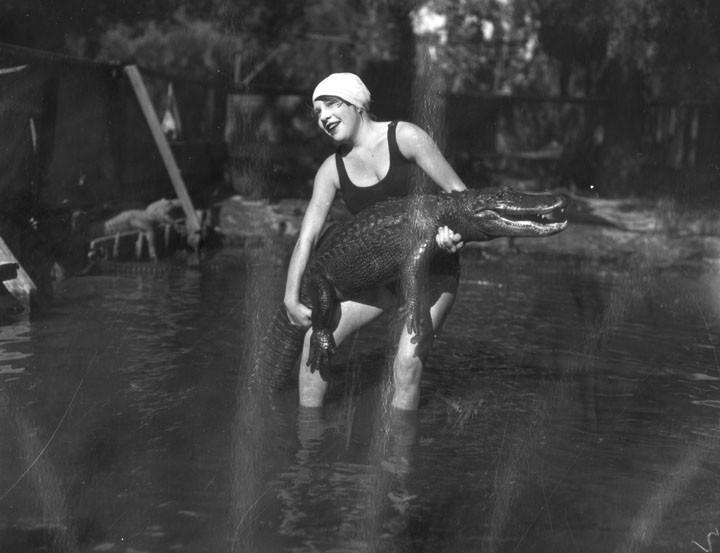 1920 год: Ферма аллигаторов в США