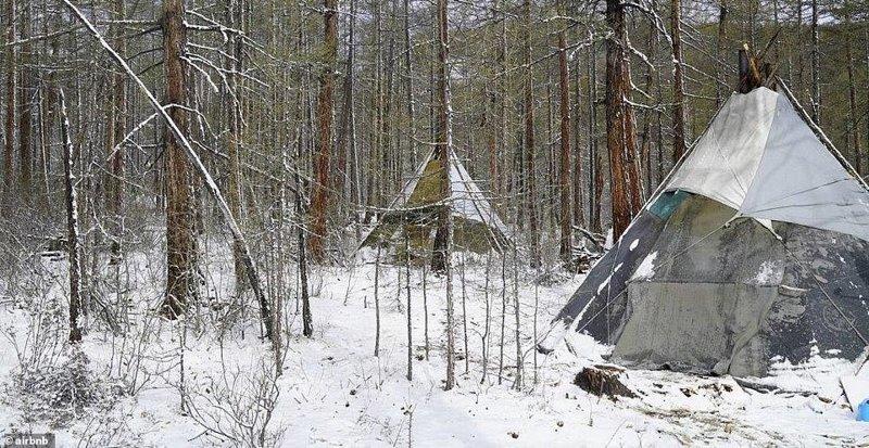 1. Семейный вигвам в Северной Монголии - 120 долларов за ночь Airbnb, аренда жилья, жилье, подборка, путешествия, разные страны, туризм, фото