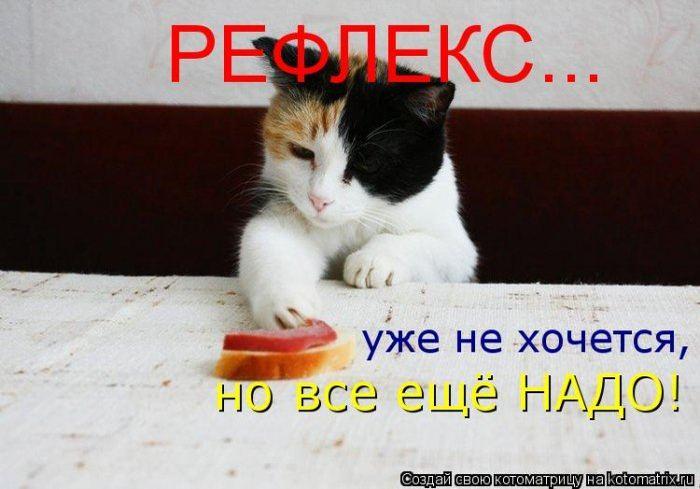 Мысли в слух :)