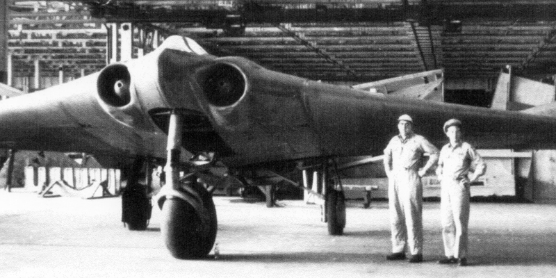 Как был устроен первый в мире самолет-невидимка, созданный Рейхом