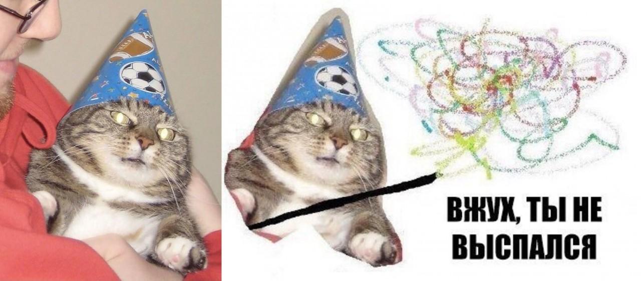 Вжух, и вы смотрите подборку картинок про кота-волшебника