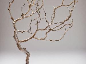 Совершенство природных форм в работах Michael Fleming