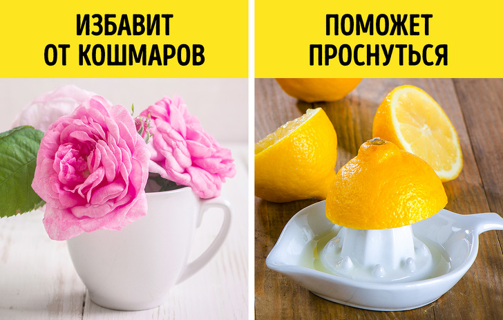 9занятий, которые нетолько принесут массу удовольствия, ноипрокачают мозг