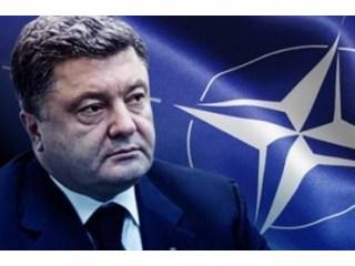 Порошенко и НАТО: новый «конь» для въезда во власть