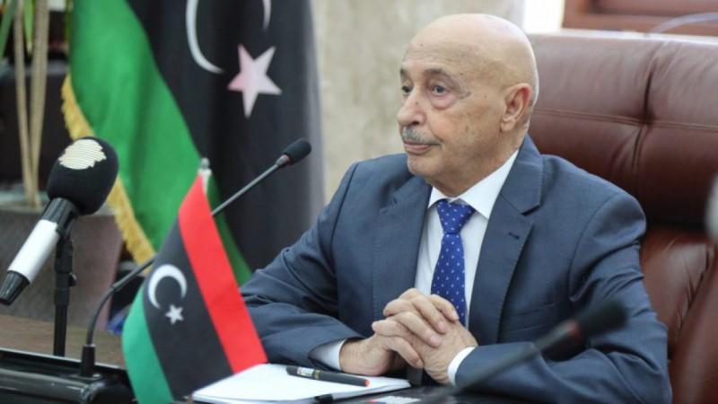 Сомнительные результаты выборов исполнительной власти Ливии проверяет СовБез ООН
