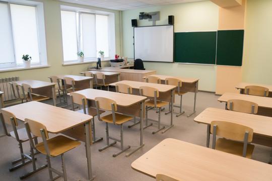 Российскому первокласснику отбили почки после жалобы матери на поборы в школе дети,общество,россияне,школа