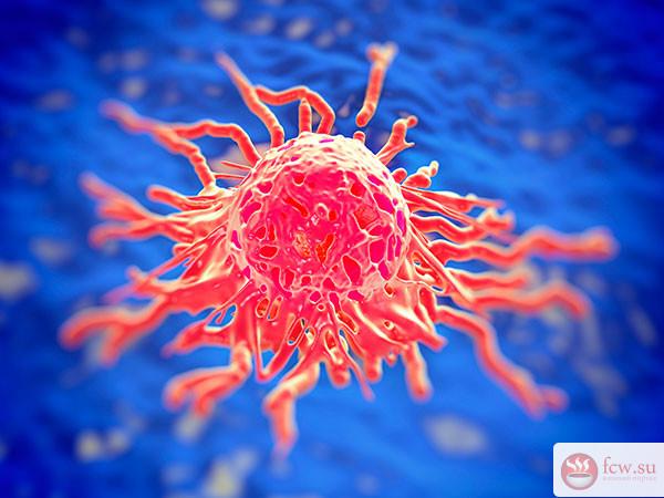 Развенчиваем мифы о раке
