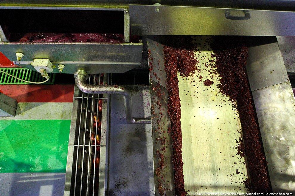 Процесс производства гранатового сока в объективе технологии