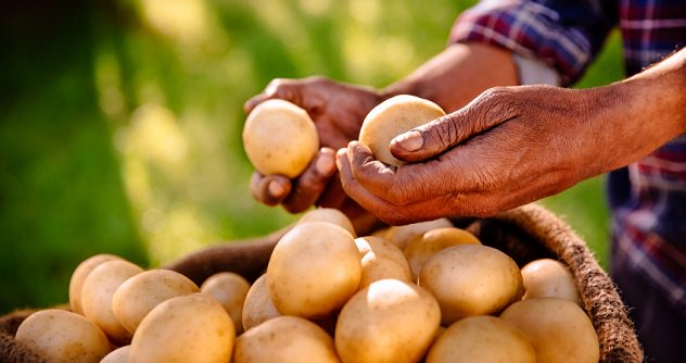 Занимательные народные легенды о наших привычных продуктах питания