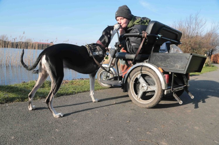 Трехногий пес спас жизнь сво…